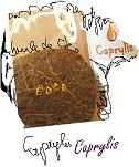 Caprylis