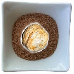 exfoliant  poudre de noix