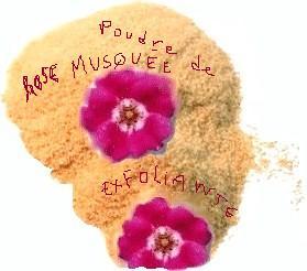exfoliant poudre Rose Musquée
